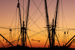 Tim Barnwell  -  Fishing Boat Masts, Darien, GA / Pigment Print  -  Available in Multiple Sizes