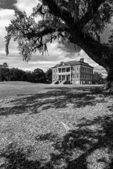 Tim Barnwell  -  Exterior, Drayton Hall Plantation, and tree, near Charleston, SC / Pigment Print  -  Available in Multiple Sizes