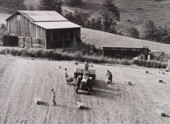 Tim Barnwell  -  Family Putting up Hay, Shelton Laurel, Madison County, NC, 1986 / Silver Gelatin Print  -  11 x 14