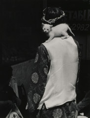 Ruth-Marion Baruch  -  White KItten on White Shoulder, Haight Ashbury, 1967 / Silver Gelatin Print  -  9.5 x  6.5