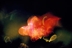 Wynn Bullock  -  Color Light Abstraction 1004, 1960-64 / Pigment Print  -  Available in multiple sizes