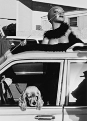 Edna Bullock  -  Head and Dog 1982 / Pigment Print  -  available in multiple sizes