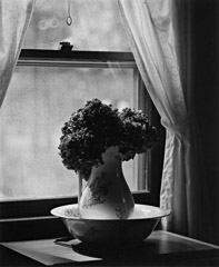 Edna Bullock  -  Still Life 1986 / Pigment Print  -  available in multiple sizes