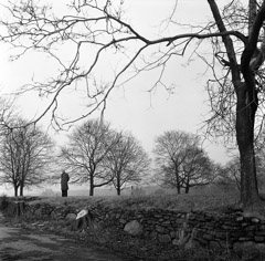 Mario DiGirolamo  -  Solitude, Italian Countryside, 1957 / Silver Gelatin Print  -  Available in multiple sizes