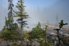 Peter Essick  -  Morning Mist, Lake O'Hara, 2012 / Pigment Print  -  12 x 18