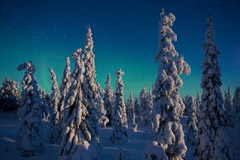 Peter Essick  -  Oulanka National Park, Finland, 2009 / Pigment Print  -  available in multiple sizes