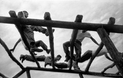 Harold Feinstein  -  Confidence Course, 1952 /   -