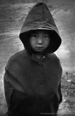 Harold Feinstein  -  Korean Child, 1953 / Silver Gelatin Print  -  11 x 14