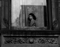 Harold Feinstein  -  Girl in Harlem Window, 1954 / Silver Gelatin Print  -  16 x 20