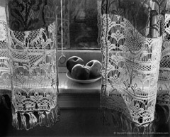 Harold Feinstein  -  My Mother's Curtains, 1948 / Silver Gelatin Print  -  20 x 24