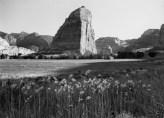 Philip Hyde  -  Steamboat Rock, Echo Park, Dinosaur National Monument, Colorado, 1955 / Pigment Print  -  11 x 14