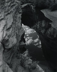 Philip Hyde  -  Reflections, Pool, Fronds Gelees Canyon, Glen Canyon, Utah, 1962 / Silver Gelatin Print  -  10 x 8