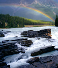 Philip Hyde  -  Rainbow Over Athabaska Falls, Jasper National Park, Alberta, Canada, 1995 / Pigment Print  -  Available in multiple sizes