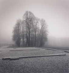 Michael Kenna  -  Site of the Royal Pavillion, Marly France, 96/97 - 6/45 / Silver Gelatin Print  -  8x7.5