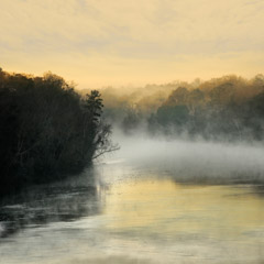 Diane Kirkland  -  Chattahoochee, River / Pigment Print  -  Available in Multiple Sizes