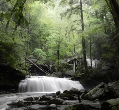 Diane Kirkland  -  Cloudland Canyon #4 / Pigment Print  -  Available in Multiple Sizes