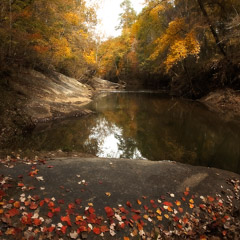 Diane Kirkland  -  Falling Creek / Pigment Print  -  Available in Multiple Sizes