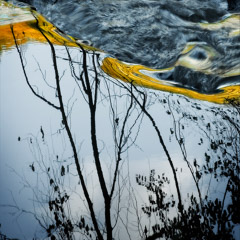 Diane Kirkland  -  Sweetwater Creek / Pigment Print  -  Available in Multiple Sizes