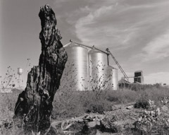 Bob Kolbrener  -  Stumps and Tanks, WY, 1998 / Silver Gelatin Print  -
