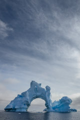 Julieanne Kost  -  Antarctica 2 / Pigment Print  -  Available in Multiple Sizes