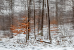 Julieanne Kost  -  Vermont, #1867, 2012 / Pigment Print  -  Available in Multiple Sizes