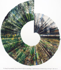 Stephen Lawson  -  Unfolding of Spring, 1987 / Chromogenic Collage  -  35 x 30