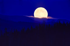 Tom Murphy  -  Moonrise / Color Pigment Print  -  Available in multiple sizes