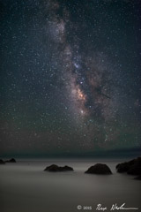 Rex Naden  -  Cosmos with Ocean / Pigment Print  -  Available in Multiple Sizes