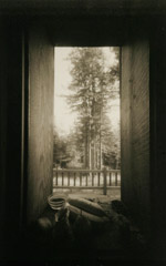 Rondal Partridge  -  Betsy's Kitchen Window, Mendocino, 1998 / Platinum Palladium  -  7 x 5