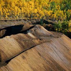 Al Weber  -  Mine Tailings and Aspens, Victor Colorado, 1983 / Chromogenic Print  -  13.75 x 13.75