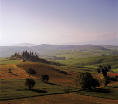 Robert Weingarten  -  St. Quirico Early Morning, Tuscany Italy, 1997 / Pigment Print  -  27 x 30