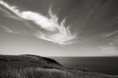 Cara Weston  -  Clouds Over Northern California 2010 / Pigment Print  -  14 x 20