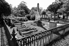 Tim Barnwell  -  2427, Laurel Grove Cemetery, Glover family grave with rail enclosure, Savannah, GA /   -