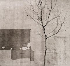 Arnold Newman  -  Tree and Wall, Philadelphia, PA, 1941 / Silver Gelatin Print  -  5.75 x 6