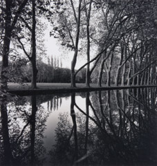 Michael Kenna  -  Allée d'Honeur, Courances France, 1995 / Silver Gelatin Print  -  8 x 8