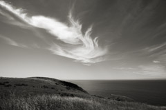 Cara Weston  -  Clouds Over Northern California 2010 / Pigment Print  -  Available in Multiple Sizes