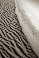 Cara Weston  -  Dune Patterns II, Death Valley, 2008 / Pigment Print  -  Available in Multiple Sizes