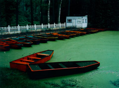 Cole Weston  -  Punts, Les Quesnoy, France, 1983 / Cibachrome Print  -  30 x 40