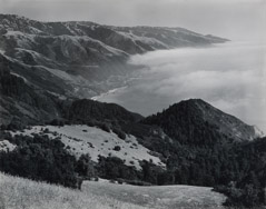Edward Weston  -  Big Sur, 1945 / Silver Gelatin Print  -  7.5 x 9.5