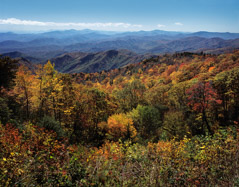Tim Barnwell  -  Mountain vistas in the fall from the Blue Ridge Parkway / Pigment Print  -  Available in Multiple Sizes