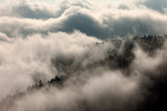 Tim Barnwell  -  Clouds, Clingmans Dome, Great Smoky Mountains National Park / Pigment Print  -  Available in Multiple Sizes