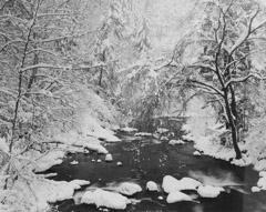 Tim Barnwell  -  Spring Creek in Heavy Snow, Hot Springs, Madison County, NC, 1987 / Silver Gelatin Print  -  16 x 20