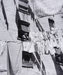 Jules Aarons  -  My Mother Hanging Laundry in the Yard:  Bronx, New York / Silver Gelatin Print  -  11 x 9
