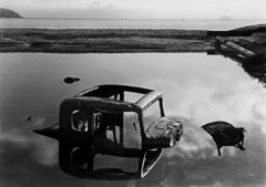 Philip Hyde  -  Sunken Car, Sausalito, San Francisco Bay, California, 1948 / Pigment Print  -  Available in multiple sizes