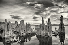 Cara Weston  -  Mono Lake / Pigment Print  -  Available in multiple sizes