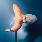 Dr. Harold Edgerton, Bullet through Bannana, 1964