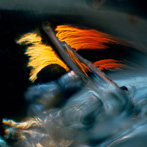 The Color of Light, Wynn Bullock