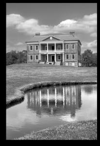 Drayton Plantation